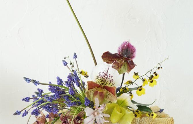 Hattie X Honey Fingers: Botanical landscape + honeycomb vessels