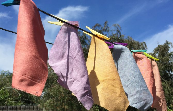 Natural Pigment Workshop: Hand Dying with Ciara Lynch